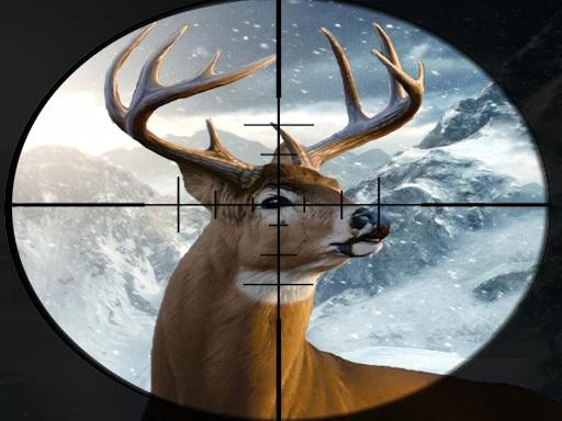 Play Hunter 3d Game
